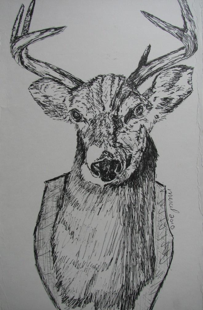 Cerf de Virginie
