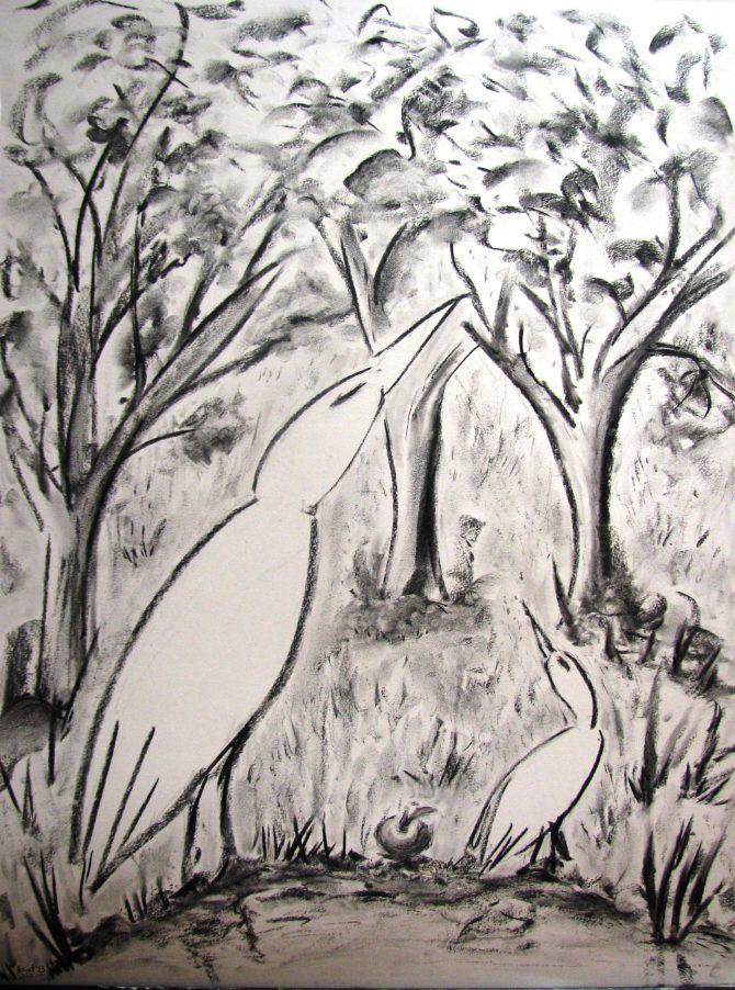 Oiseaux ailleurs