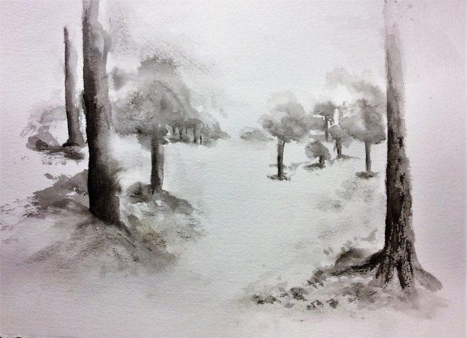 Le sentier des arbres orphelins