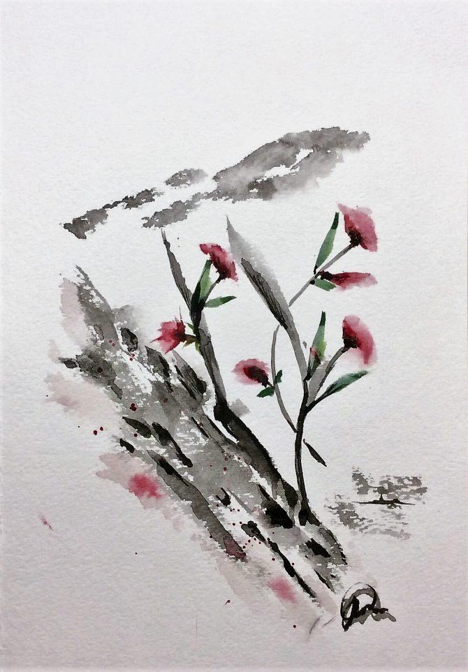 Fleurs de roche