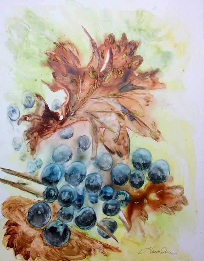 Errance au vignoble