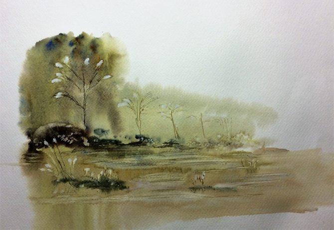 Le marais des virgiliers