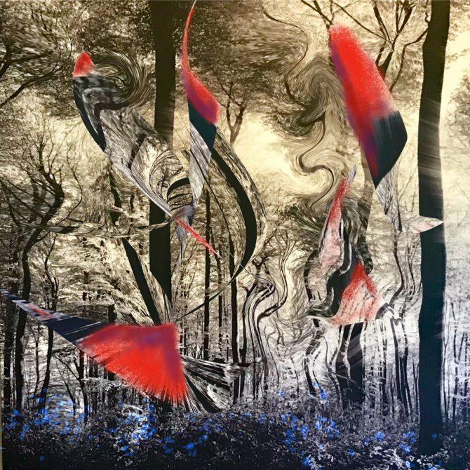 Forêt des lucioles